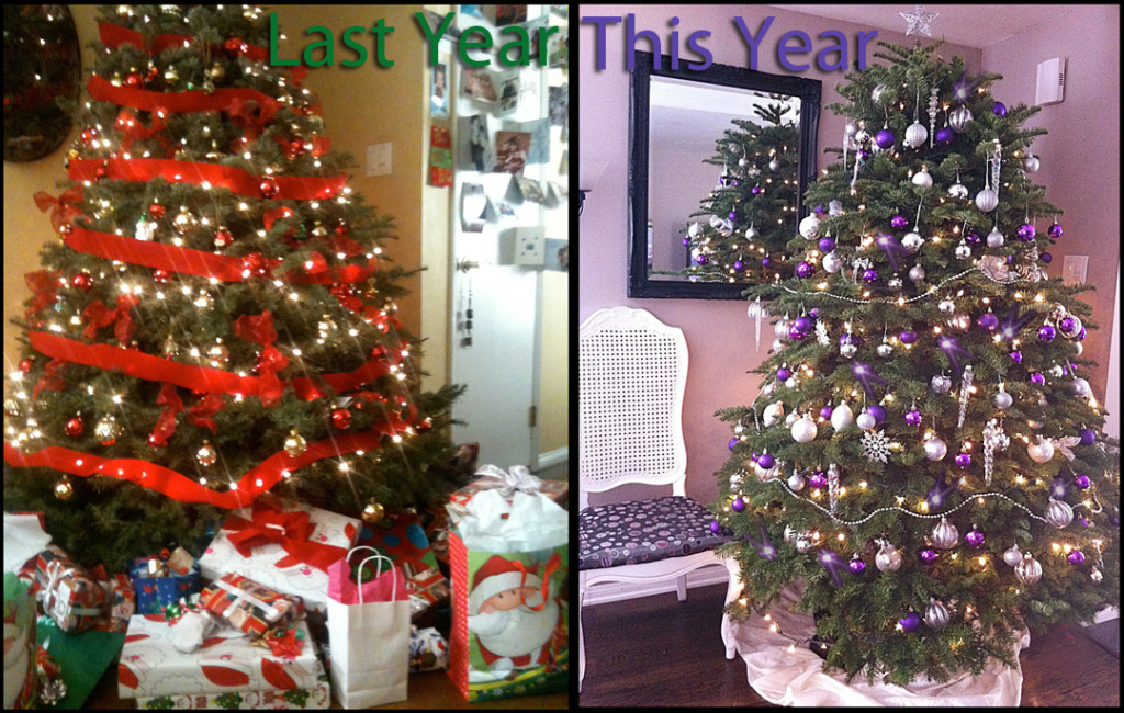 Duff Images Last year & this year's tree